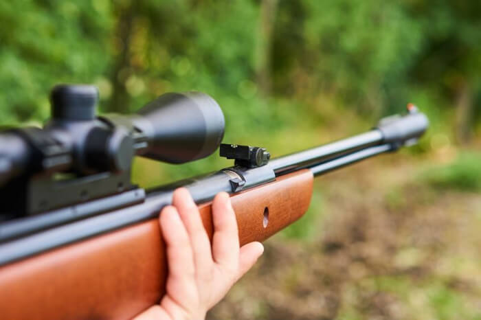 Are Shotguns or Air Rifles Preferred for Pest Control?