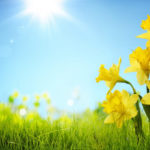 How Does Spring Affect the Pest Calendar?